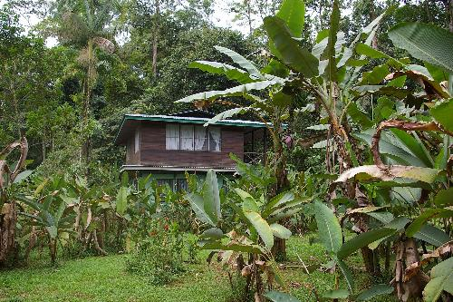 Scientist house at La Selva Biological Station. By Felineora [CC BY-SA 3.0  (https://creativecommons.org/licenses/by-sa/3.0)], from Wikimedia Commons